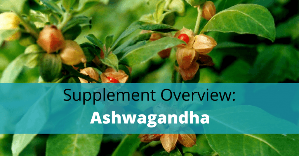 Ashwagandha plant with text overlay